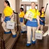 The Maids of Forsyth and Gwinnett Counties