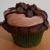 Munchie Cakes Homemade Cupcakes