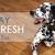 Mobile Pet Wash, Inc.