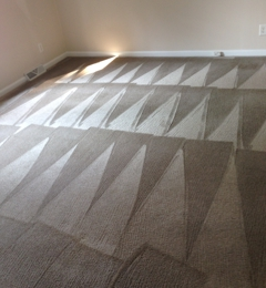 O2 Green Carpet Cleaning Clarksville