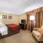 Comfort Inn & Suites - Denver, CO