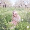 Samantha McAllister Photography