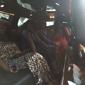 Distinct Limousine Service - Baton Rouge, LA