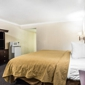 Quality Inn & Suites - Thousand Oaks, CA