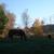 Cantrell Farm