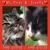 Animal Care Center-