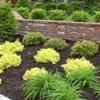 RG Complete Lawn Maintenance Landscape